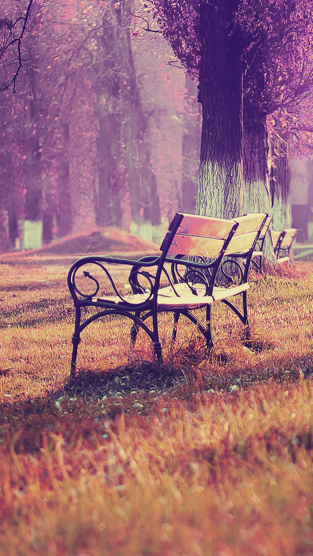 Wallpaper Fall Blue Park Chair Lonely Nature