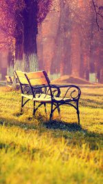 Wallpaper Fall Park Chair Lonely Nature