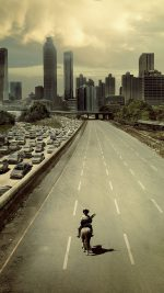 Wallpaper Walking Dead City Film