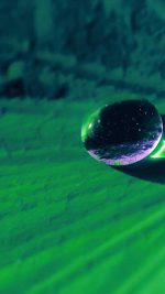 Water Drop On Green Flower Nature