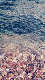 Water Ripples Sea Clear Nature Pattern