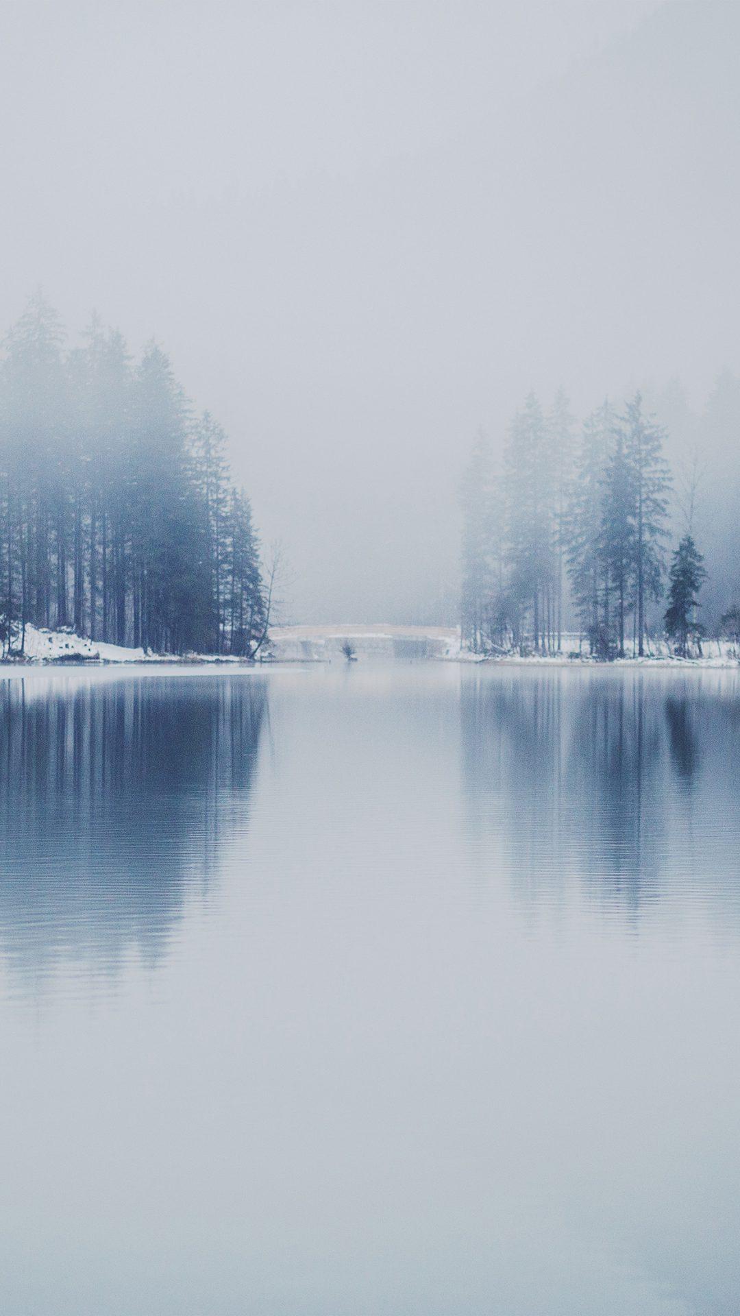Winter Lake White Blue Wood Nature