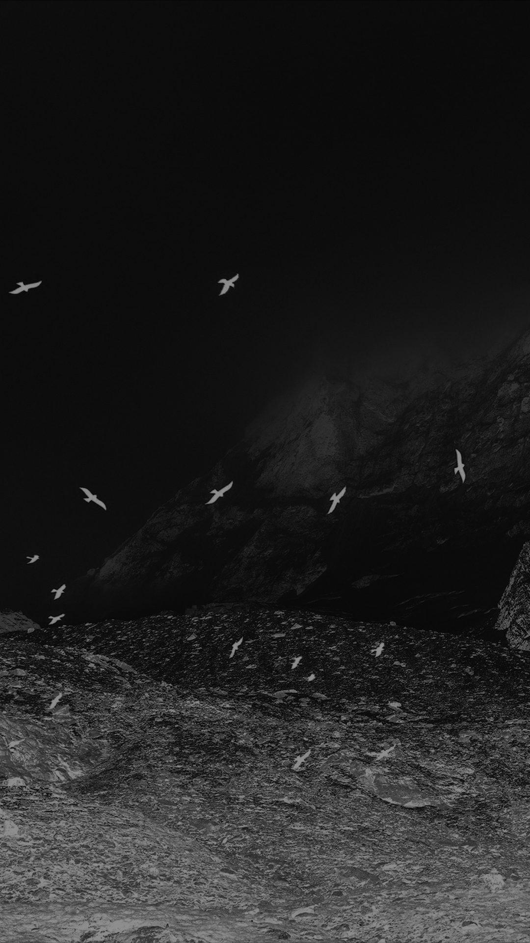 Winter Mountain Bird Rene Reichelt Black Nature