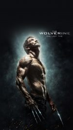 Wolverine Last Hero Art Film