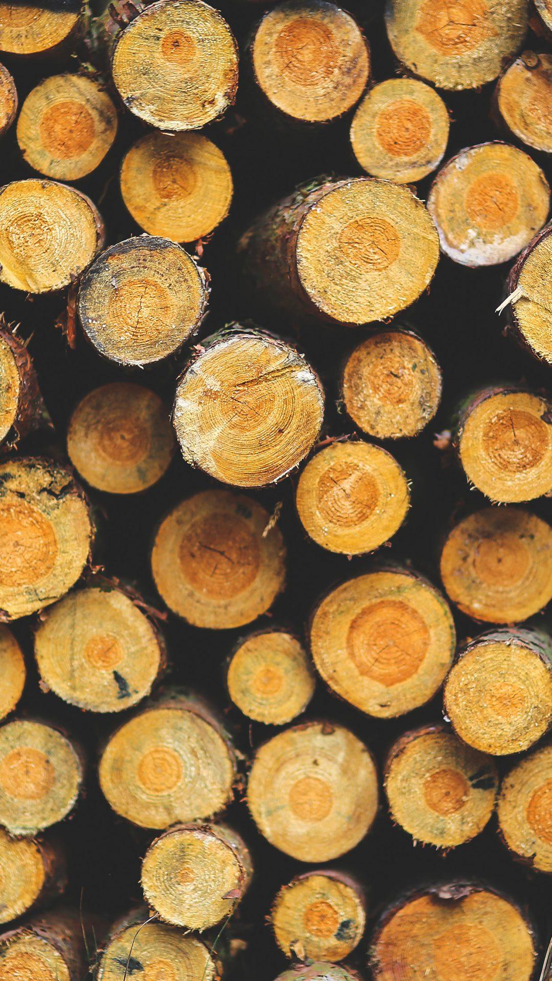Wood Circle Piles Nature Pattern