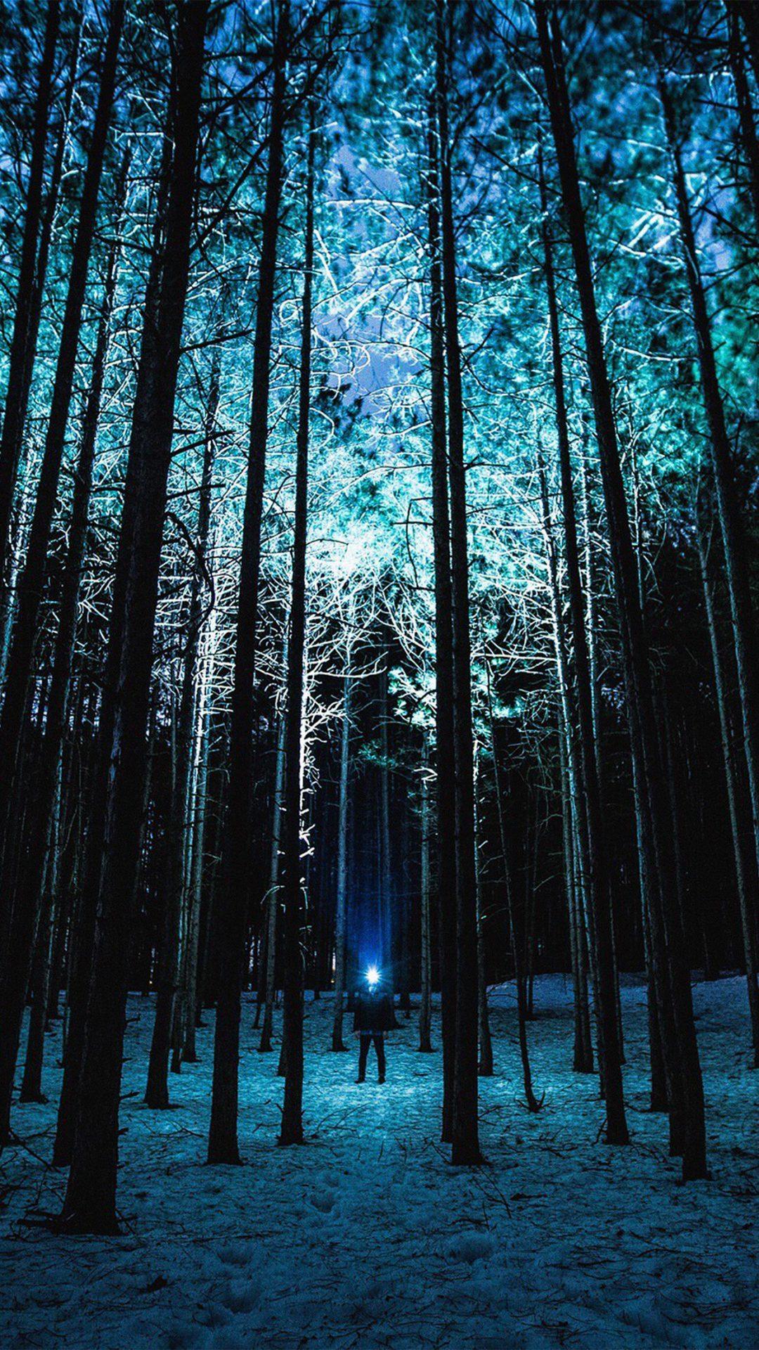 Wood Mountain Nature Blue Night