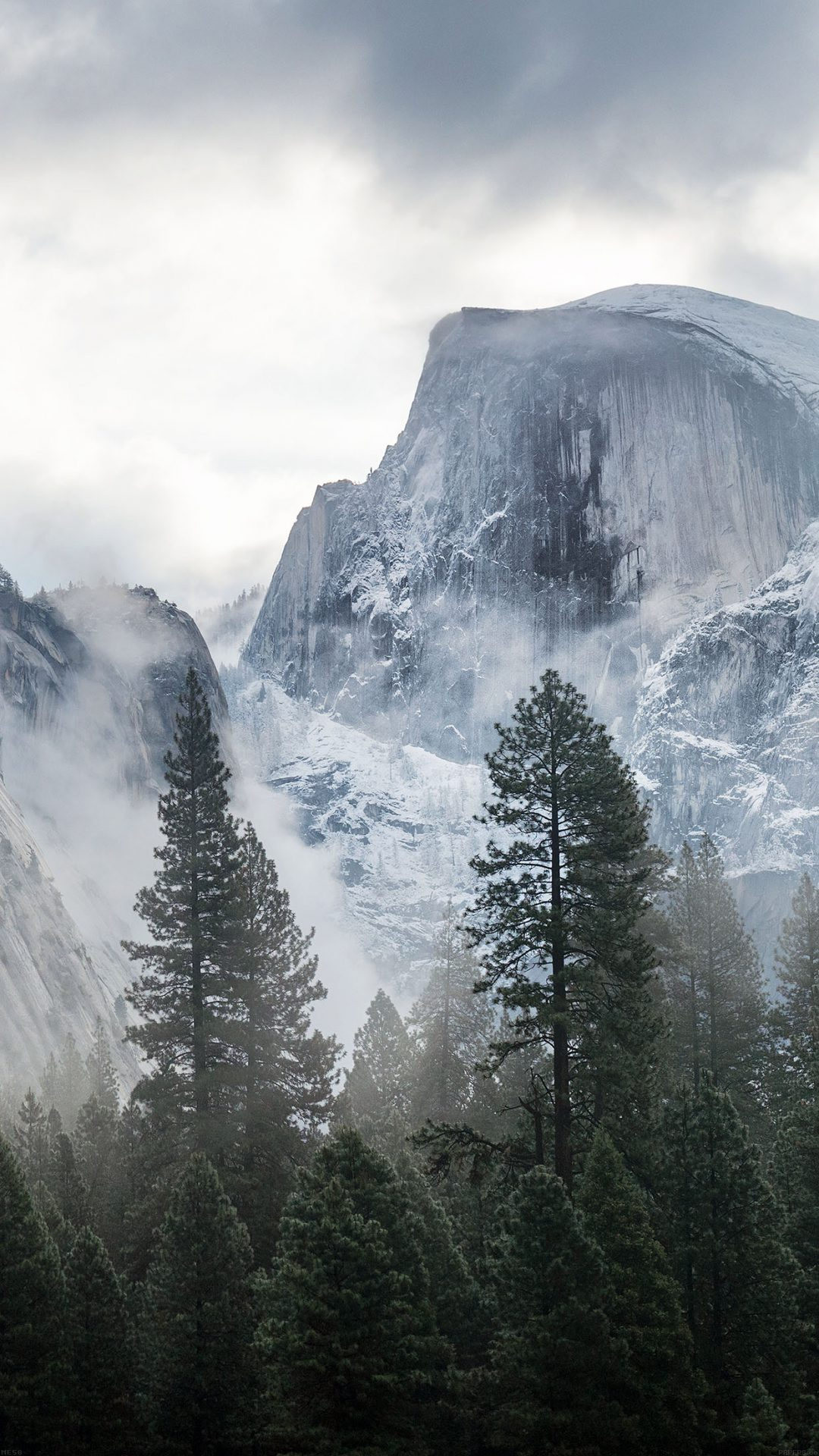 Yosemite Snow Mountain Nature