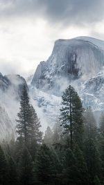 Yosemite Snow Mountain Nature