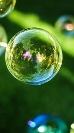 Bubble Summer Day Green Bokeh