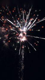Firework Art Night Sky City Party