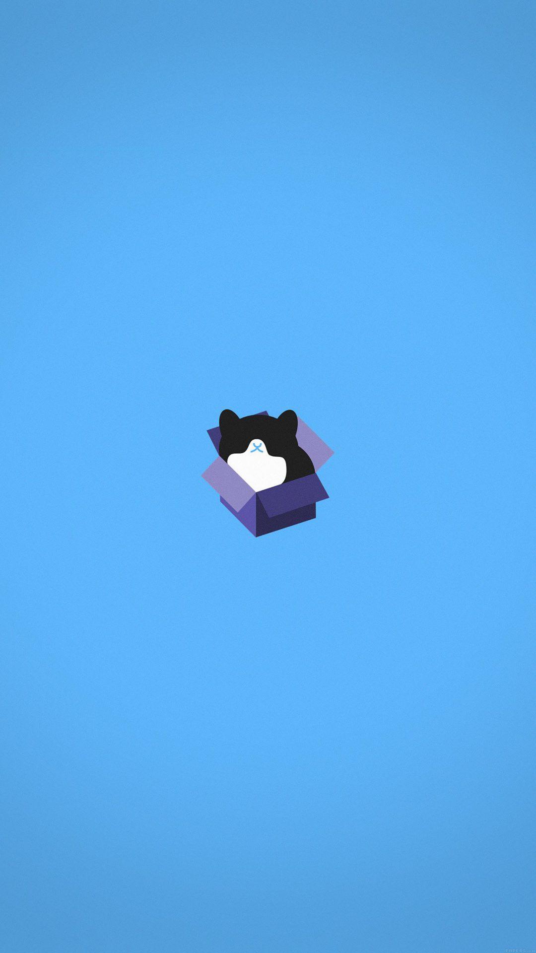 Cat Box Blue Illust Animal Art Minimal