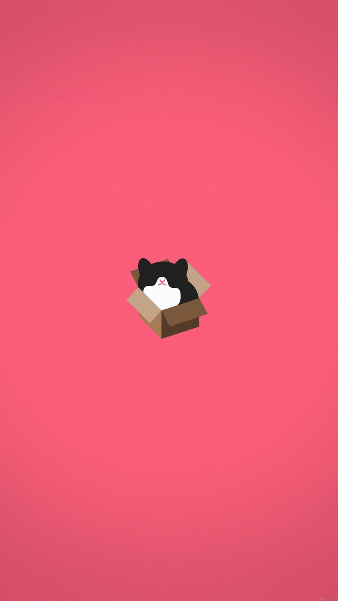 Cat Box Red Illust Animal Art Minimal