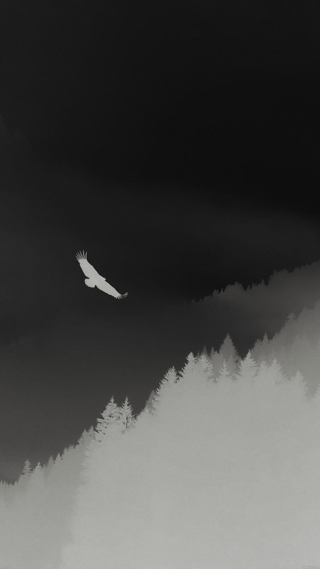 Eagle Mountain Dark Fly Animal