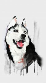 Happy Dog Husky Animal Illust Watercolor