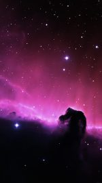 Horse Head Nebula Space Stars