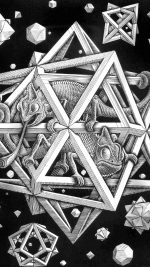 Mc Escher Space Art Illust Lizard Bw