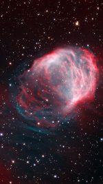 Space Medusa Crawford Galaxy Star Red