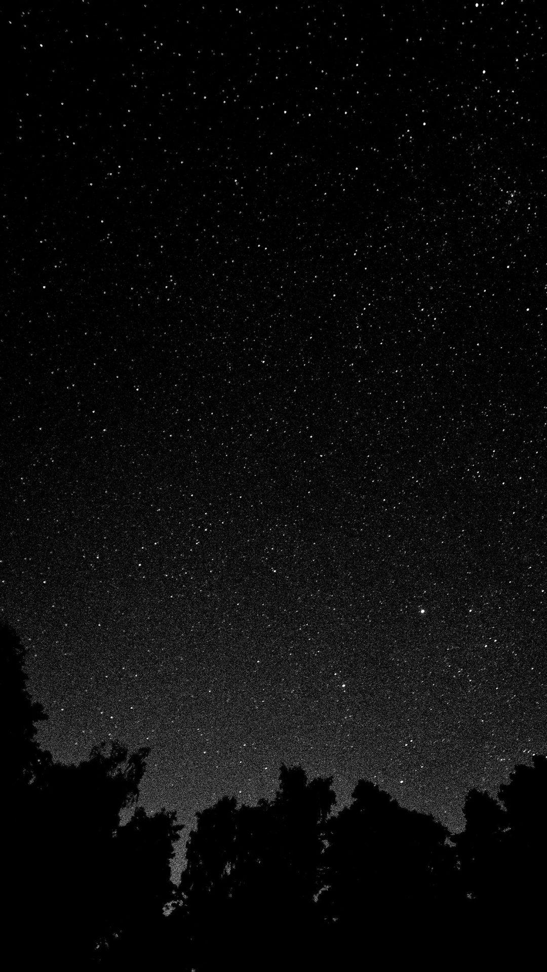Starry Night Sky Star Galaxy Space White Black